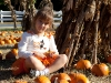 Sarah posing with the pumpkins